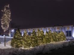 winter-christmas-lights-barrington