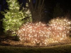 holiday-tree-light-installer-barrington