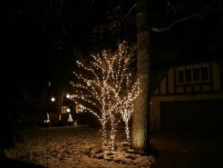 holiday-light-hanging-winnetka